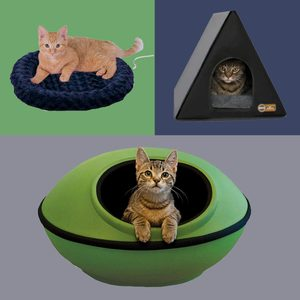 9 Best Heated Cat Beds