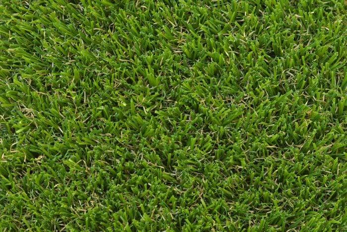 close up of bermuda grass texture
