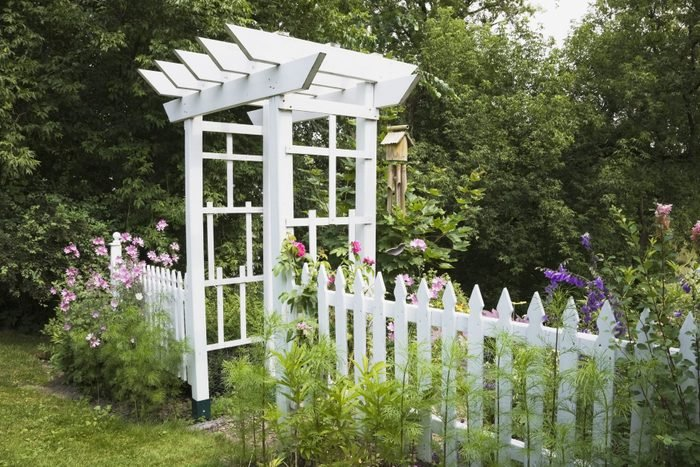 White wooden arbour and picket fence in a landscaped residential backyard garden in summer