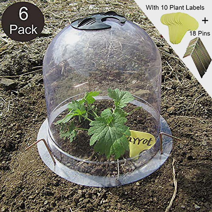 Plastic Plant Covers